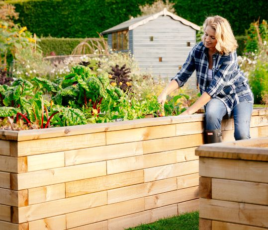 Growing boom - The rise of the raised bed