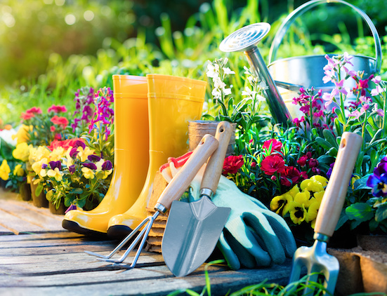 The Five Essential Gardening Tools Every Gardener Needs