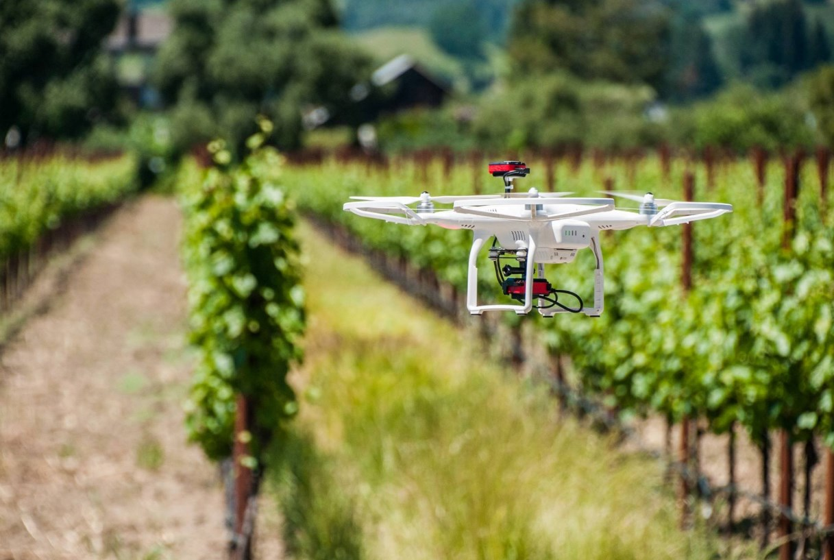 Using drones to keep crops healthy