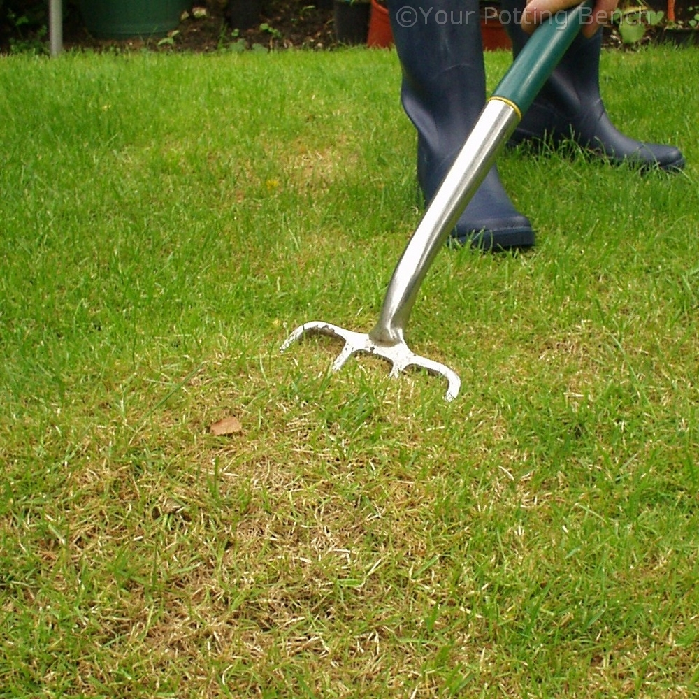 Step 4 of How to care for your lawn in Autumn