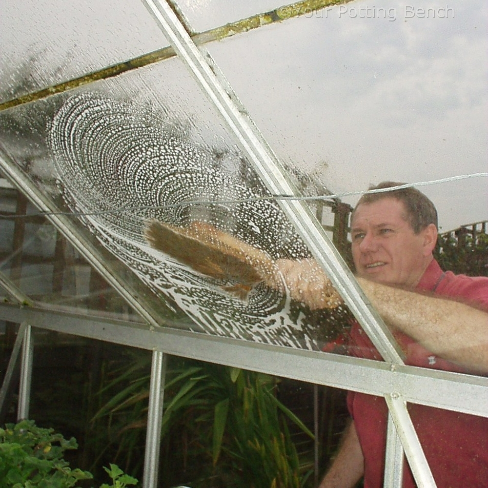 Learn about  How to care for your Greenhouse