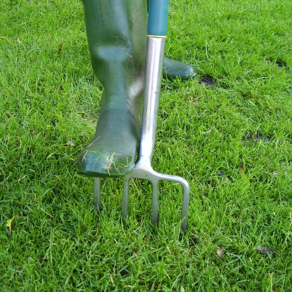 How to garden: How to keep a lawn drained