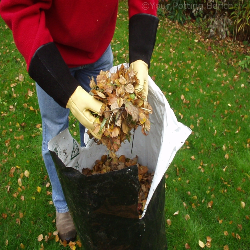 Step 2 of How to Make Leaf Mould