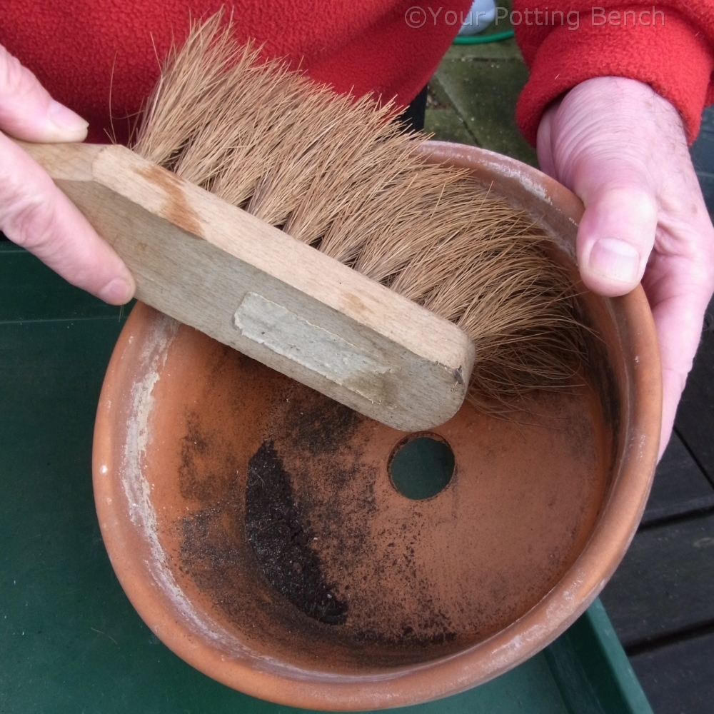 How to garden: How to clean your pots