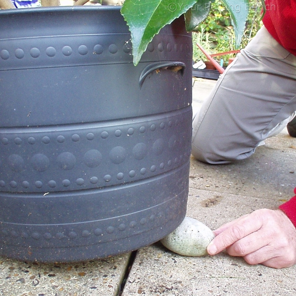 Step 4 of How to keep Containers Well-Drained